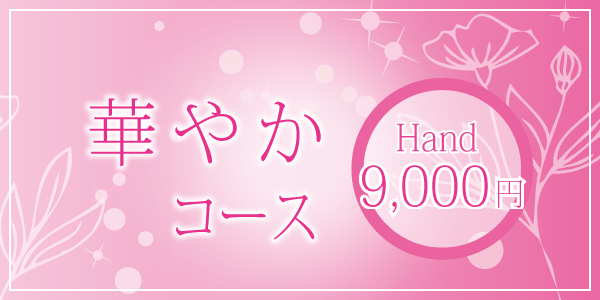 華やかコース¥9,000